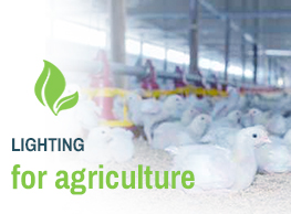 Lighting for agriculture