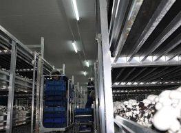 Lighting production halls